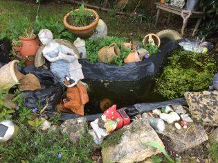 wildlife gardening in may