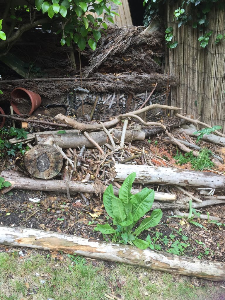 wildlife gardening log pile insect hotel