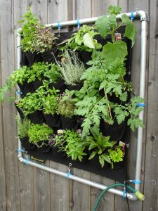 create fun outdoor environment for family vertical garden