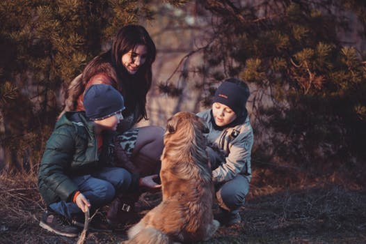 incorporate nature into play children with dog