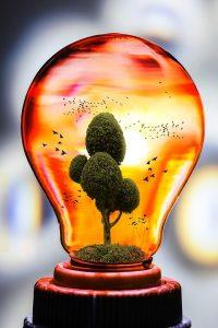 lowering electric bill image light bulb