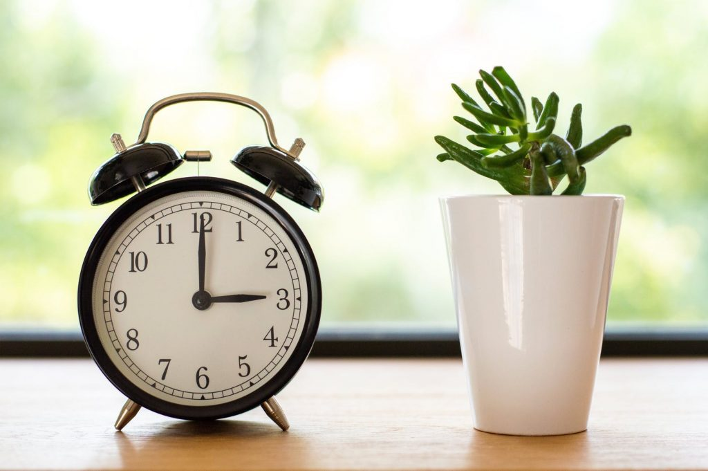 schedule a daily cleaning time